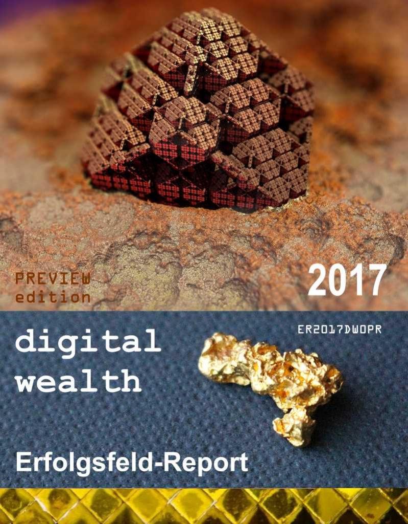 Erfolgsfeld Report digital wealth 2017