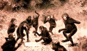 Affenlärm Geschrei um Nichts Einmischung der Wahnsinnigen