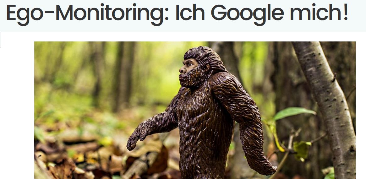 Ego-Monitoring Ich Google Mich