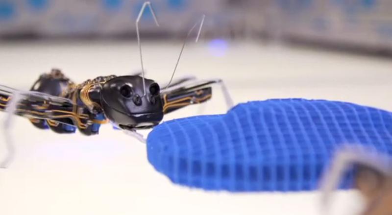 Bionic Ants von Festo Herstellervideo Video Golem
