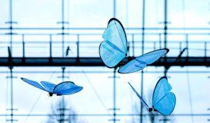 bionic wunderwelt biologie trifft technologie die zukunft gehört der bionischen Welt