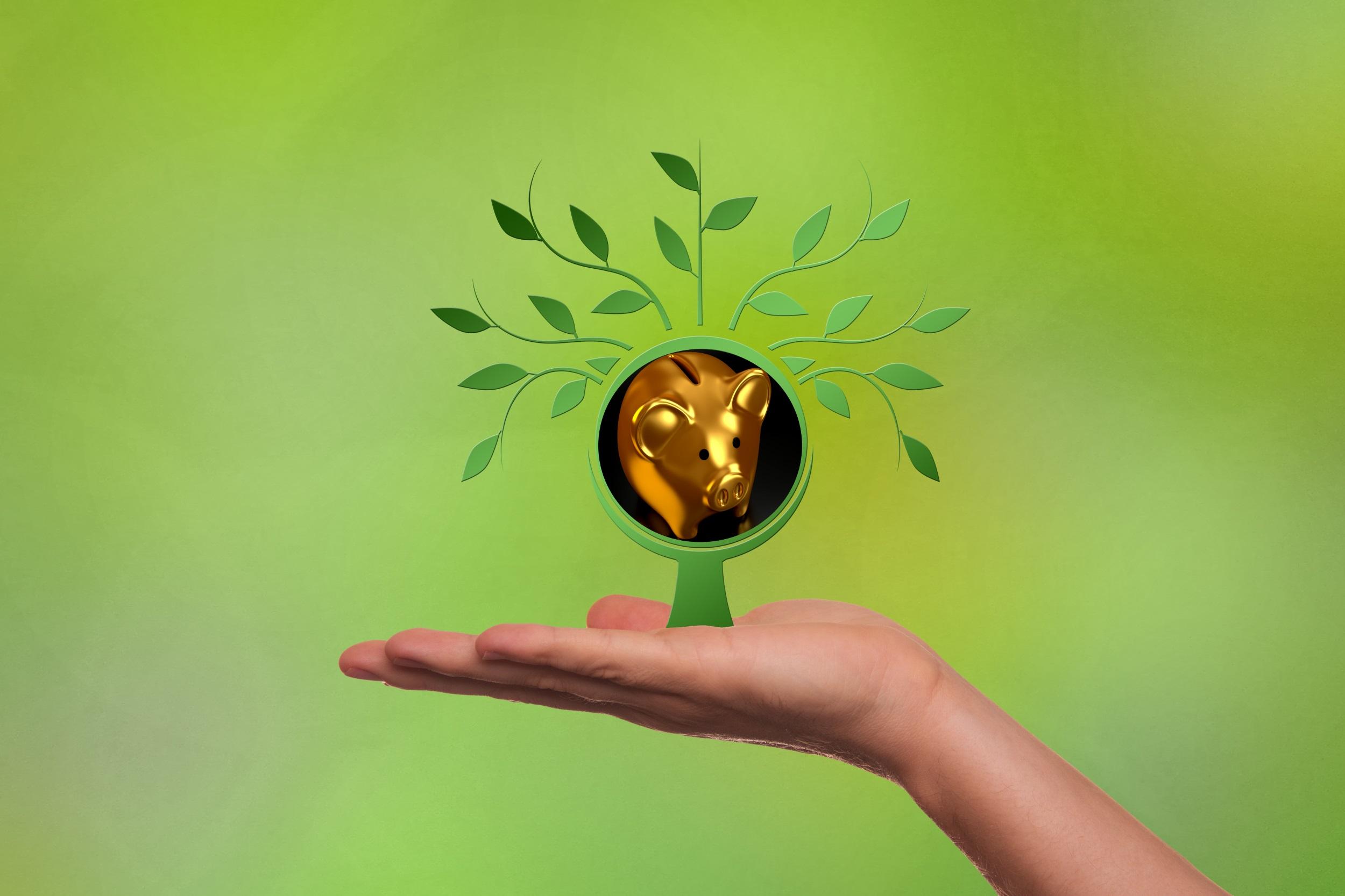 Digitale Wertschöpfung im Spannungsfeld von Rendite und Impact